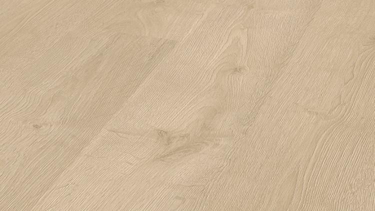 8093_Lancater Oak